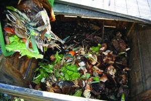 composter ses déchets 3