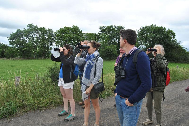 Mercredis de la Biodiversité : soyons curieux, ouvrons nos yeux à Neuvéglise !