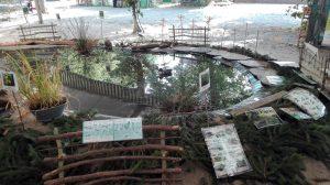 La-mare-un-refuge-de-biodiversite