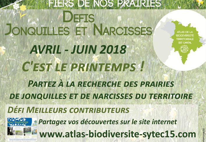 Atlas de la Biodiversité Territoriale : les défis « Jonquilles et Narcisses » !