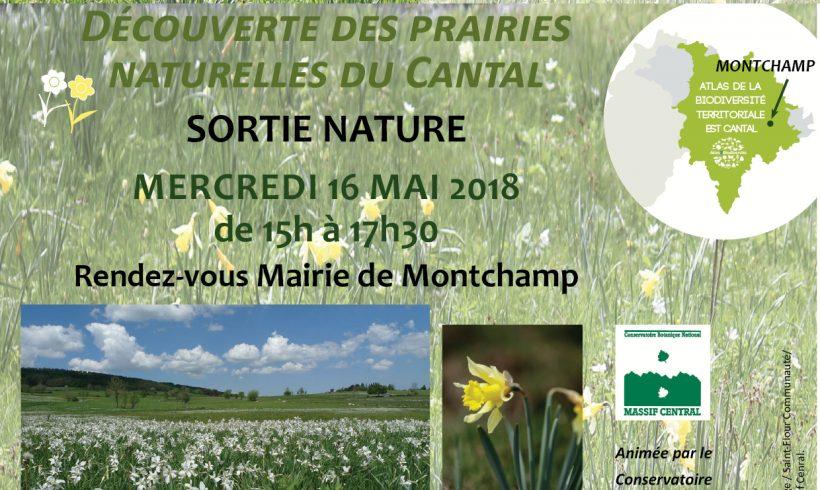 Les Mercredis de la Biodiversité : Fleurs et Prairies naturelles