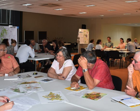 Elaboration du SCoT Est Cantal : ateliers du Projet d'Aménagement et de Développement Durables (PADD)
