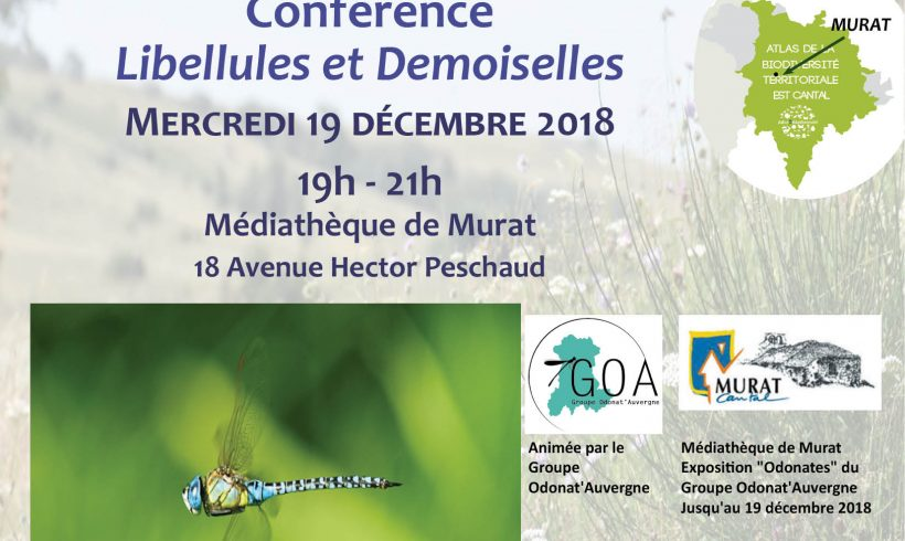 Mercredi de la Biodiversité – Libellules et Demoiselles