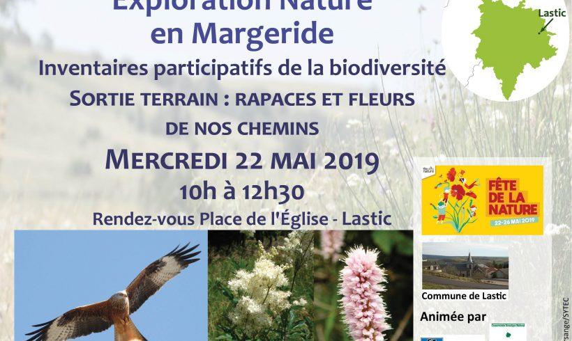 Exploration nature en Margeride : rapaces et fleurs de nos chemins