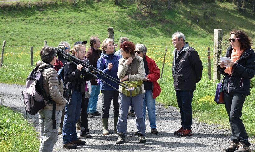 Une exploration nature en Margeride à Lastic