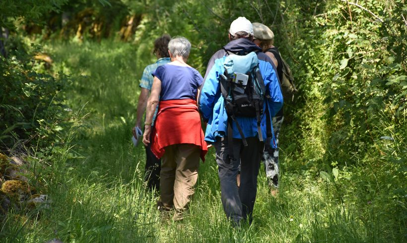 Les botanistes en herbe en sortie à Pierrefort – Atlas de la Biodiversité Territoriale