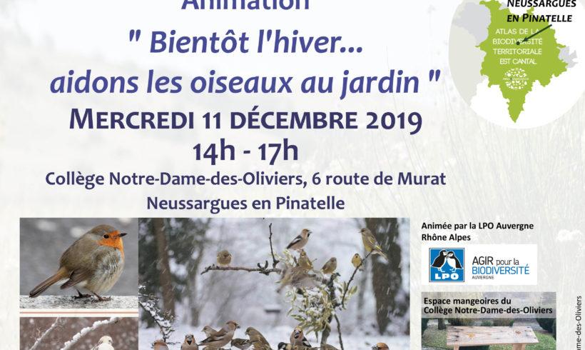 Mercredi de la Biodiversité – Bientôt l'hiver… aidons les oiseaux au jardin !