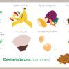 SEMAINE EUROPEENNE DE REDUCTION DES DECHETS – JOUR 3 : Nos biodéchets sont une ressource précieuse pour nos sols, donnons leur une seconde vie !
