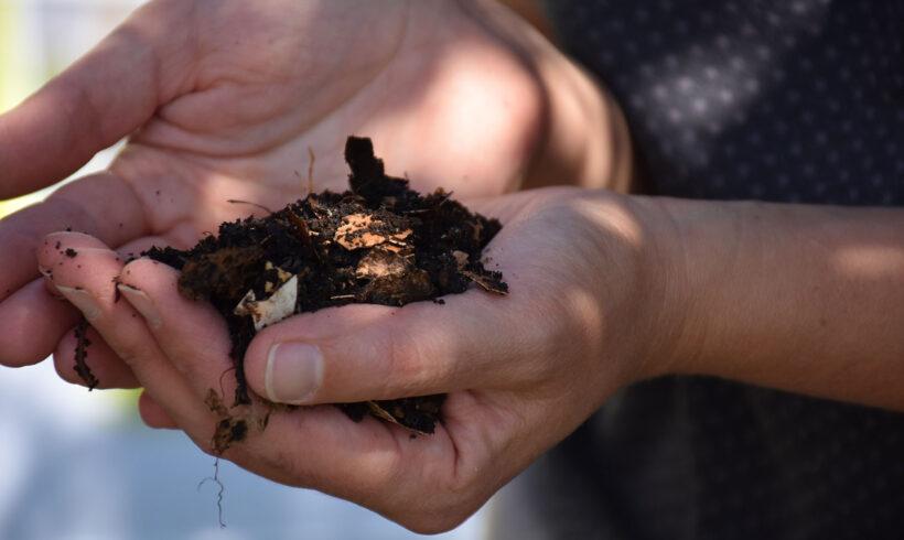 COMPOSTAGE :  les atouts du compost