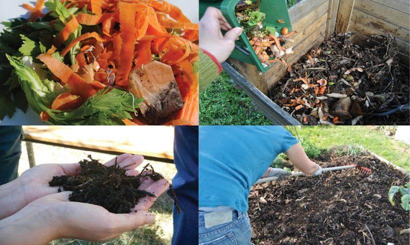 COMPOSTAGE – Comment nos déchets se transforment en compost ?